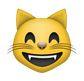 lachender katzen smiley - whatsapp smileys bedeutung